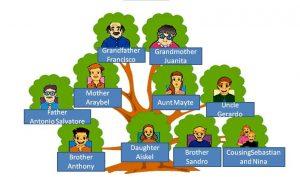Jerarquía En La Familia Diada
